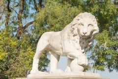 Estatua del león Imágenes de archivo libres de regalías