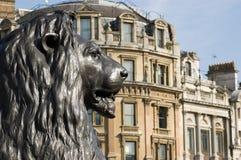Estatua del león, cuadrado de Trafalgar Foto de archivo