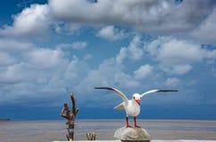 Estatua del pájaro en la explosión Poo, Samut Prakan, que es los touris populares imagen de archivo libre de regalías