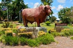 Estatua del toro de Santa Gertrudis en Rockhampton, Queensland foto de archivo