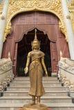 Estatua derecha de talla de bronce del dava Fotografía de archivo libre de regalías