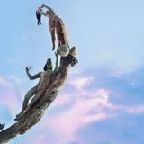 Estatua en el malecon Puerto Vallarta del paseo marítimo imagen de archivo