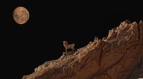 Estatua en las montañas del atlas Foto de archivo libre de regalías