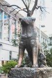 Estatua famosa del perro de Hachiko Japón como señal en Shibuya Tokio | Turista en Japón Asia el 30 de marzo de 2017 Imágenes de archivo libres de regalías