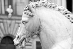 Estatua Florencia Toscana Italia del caballo Fotos de archivo