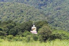 Estatua grande de Buda en la montaña Imagenes de archivo