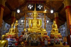 Estatua grande de oro de Buda para la rogación y el respecto de la gente Fotos de archivo