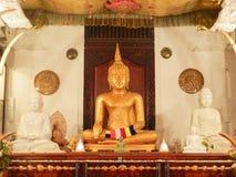 Estatua hermosa de Buda en el templo de Kandy Foto de archivo libre de regalías