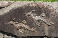 Estatua llena de yerbajos de Seadragon en roca en la playa de hombres, Sydney Australia imagen de archivo