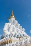 estatua que se sienta de 5 Buddhas Foto de archivo libre de regalías