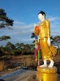 Estatua Tailandia de Buda Fotos de archivo libres de regalías