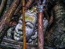 Estatua vieja de la cabeza de Buda del primer foto de archivo libre de regalías