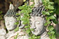 Estatua y naturaleza de Budda Imagenes de archivo
