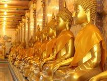 Estatuas de Buda del oro Imágenes de archivo libres de regalías