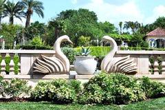 Estatuas de los cisnes en un jardín tropical Fotografía de archivo libre de regalías
