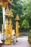 Estatuas de oro de Buda en Wat Sisaket, Vientián fotografía de archivo