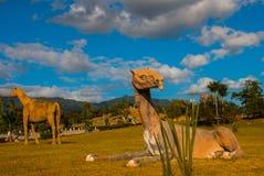 Estatuas del dinosaurio en el campo Modelos animales prehistóricos, esculturas en el valle del parque nacional en Baconao, Cuba Imagen de archivo libre de regalías