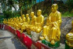 Estatuas en el monasterio de Buddhas de los diez milésimos en la lata de Sha, Hong Kong, China foto de archivo libre de regalías