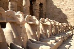 Estatuas en el templo de Karnak Fotos de archivo libres de regalías