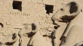 Estatuas en el templo de Karnak Imagenes de archivo