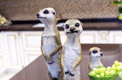 Estatuetas cerâmicas dos meerkats no interior da casa imagem de stock
