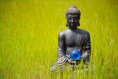 Estatuilla de Buda con la bola de cristal de la tierra en la naturaleza Foto de archivo libre de regalías