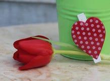 Este coração dos meus Fotografia de Stock