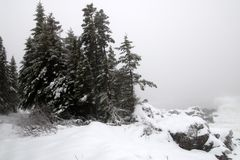 Este-costa del invierno fotos de archivo libres de regalías