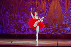 Este cuento eterno del ballet Foto de archivo libre de regalías