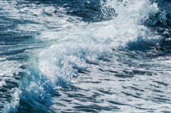 Estela del barco de la velocidad Foto de archivo libre de regalías