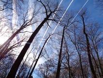 Estelas de vapor en el cielo del invierno Foto de archivo libre de regalías