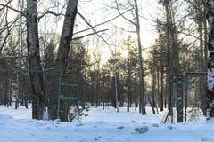 Estensioni innevate del paesaggio di inverno Un parco nell'inverno dentro immagini stock