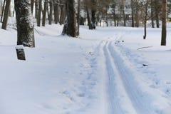Estensioni innevate del paesaggio di inverno Un parco nell'inverno dentro immagini stock libere da diritti