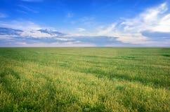 Estepa de Astrakhan debajo del cielo hermoso Panorama de la naturaleza cerca del lago de sal Baskunchak Foto de archivo