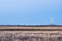 Estepe e turbinas eólicas Fotografia de Stock