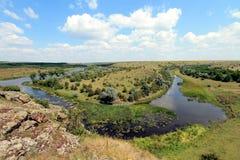 Estepe em Ucrânia Plantas do estepe Borysthenica de Stipa Valesiaca do Festuca Imagem de Stock Royalty Free