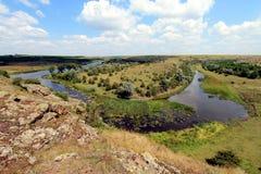 Estepe em Ucrânia Plantas do estepe Borysthenica de Stipa Valesiaca do Festuca Imagens de Stock Royalty Free
