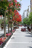 Estepona high street in Spain Stock Image
