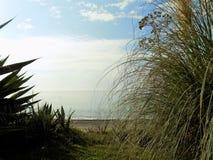 Estepona strand-AndalusiaSPAIN Stock Fotografie