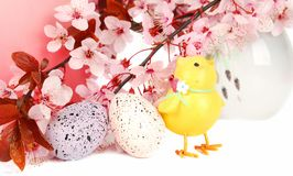 Ester composition with chick. royalty free stock photo