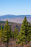 Ester Dome in Fall Royalty Free Stock Image