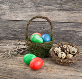 Ester eggs in basket, quail eggs in nest, willow branch Royalty Free Stock Photo