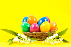 Ester eggs in basket traditional celebrate Stock Images
