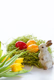 Ester eggs with bunny and tulips Royalty Free Stock Photo
