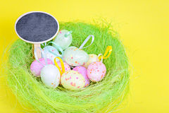 Ester eggs in green nest with copy-space board Stock Image