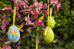 Ester eggs on tree Stock Photography