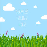 Ester spring vector seamless  background. Royalty Free Stock Photo