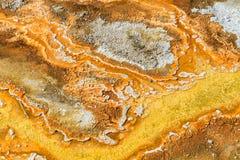 Esteras microbianas en las piscinas geotérmicas, parque nacional de Yellowstone foto de archivo