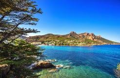 Esterel晃动海滩海岸、树和海 戛纳圣拉斐尔Co 库存照片