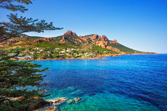 Esterel bascule la côte, l'arbre et la mer de plage Saint Raphael Co de Cannes images libres de droits